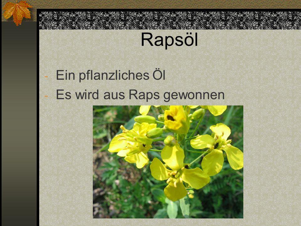 Rapsöl - Ein pflanzliches Öl - Es wird aus Raps gewonnen