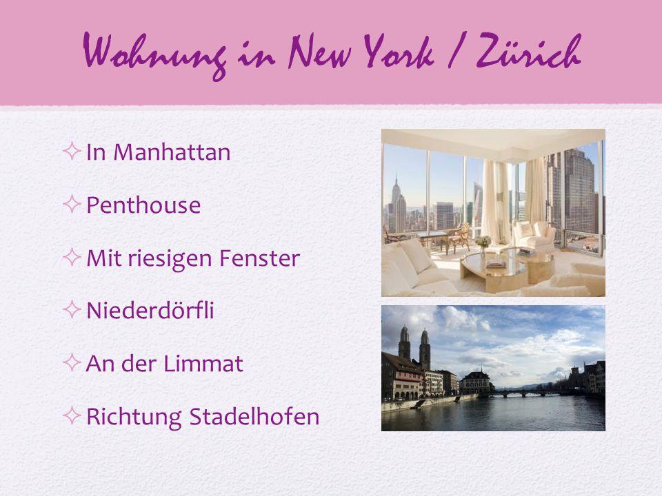 Wohnung in New York / Zürich  In Manhattan  Penthouse  Mit riesigen Fenster  Niederdörfli  An der Limmat  Richtung Stadelhofen