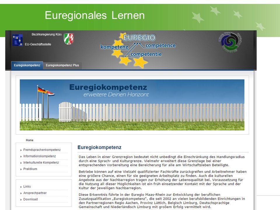 Euregionales Lernen