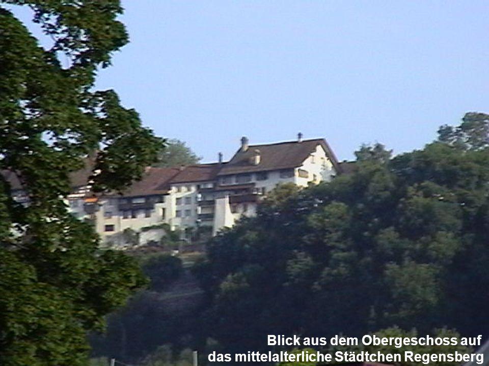 Blick aus dem Obergeschoss auf das mittelalterliche Städtchen Regensberg