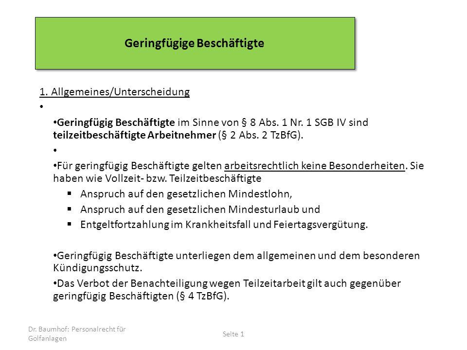 1.Allgemeines/Unterscheidung Geringfügig Beschäftigte im Sinne von § 8 Abs.