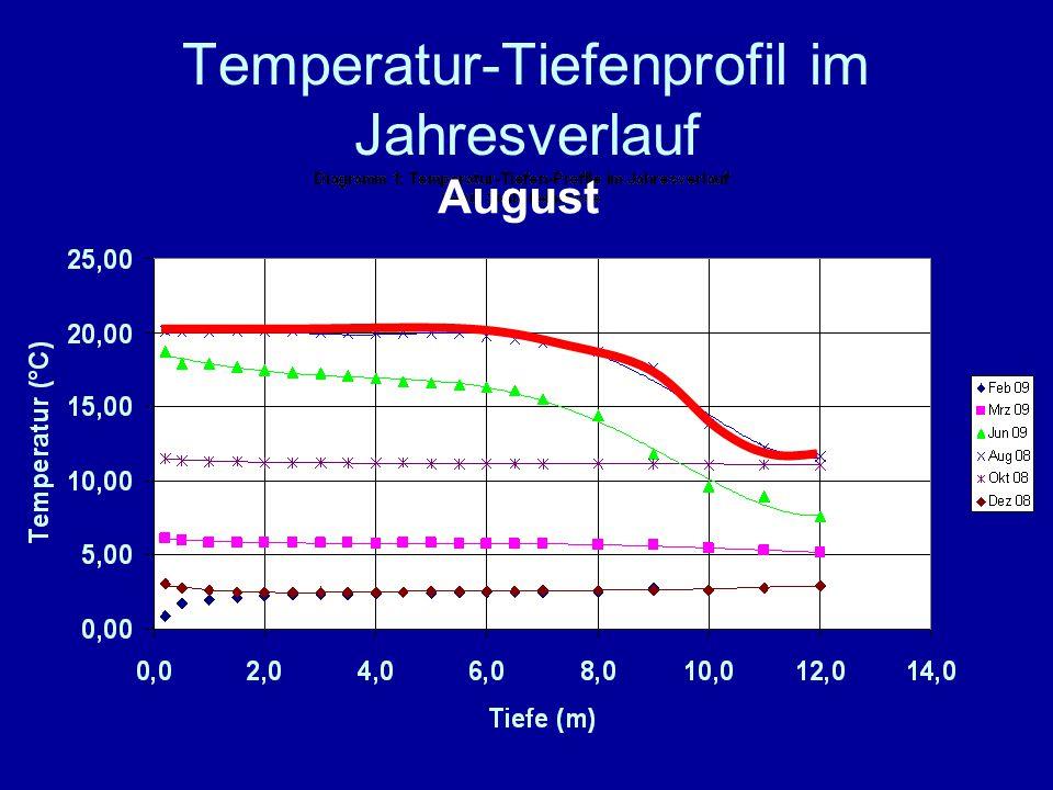 Temperatur-Tiefenprofil im Jahresverlauf August