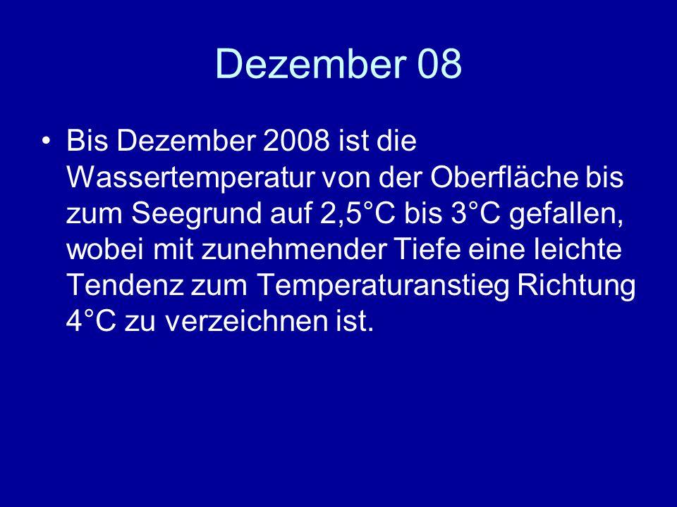 Dezember 08 Bis Dezember 2008 ist die Wassertemperatur von der Oberfläche bis zum Seegrund auf 2,5°C bis 3°C gefallen, wobei mit zunehmender Tiefe eine leichte Tendenz zum Temperaturanstieg Richtung 4°C zu verzeichnen ist.