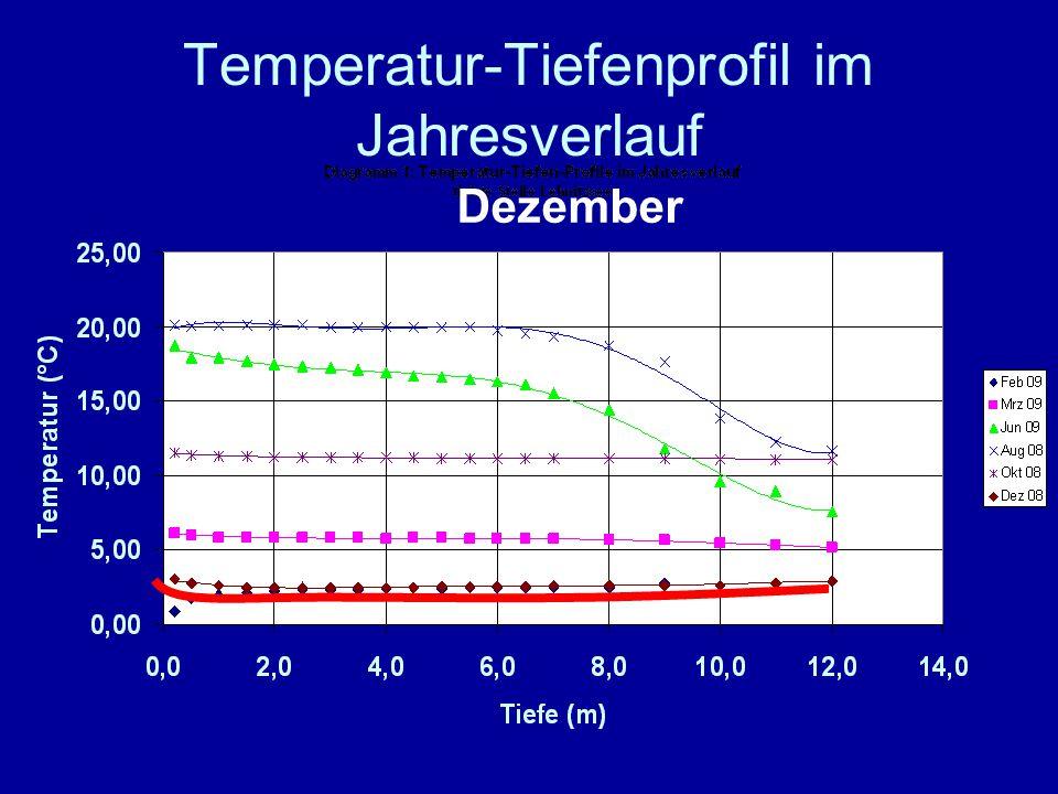 Temperatur-Tiefenprofil im Jahresverlauf Dezember