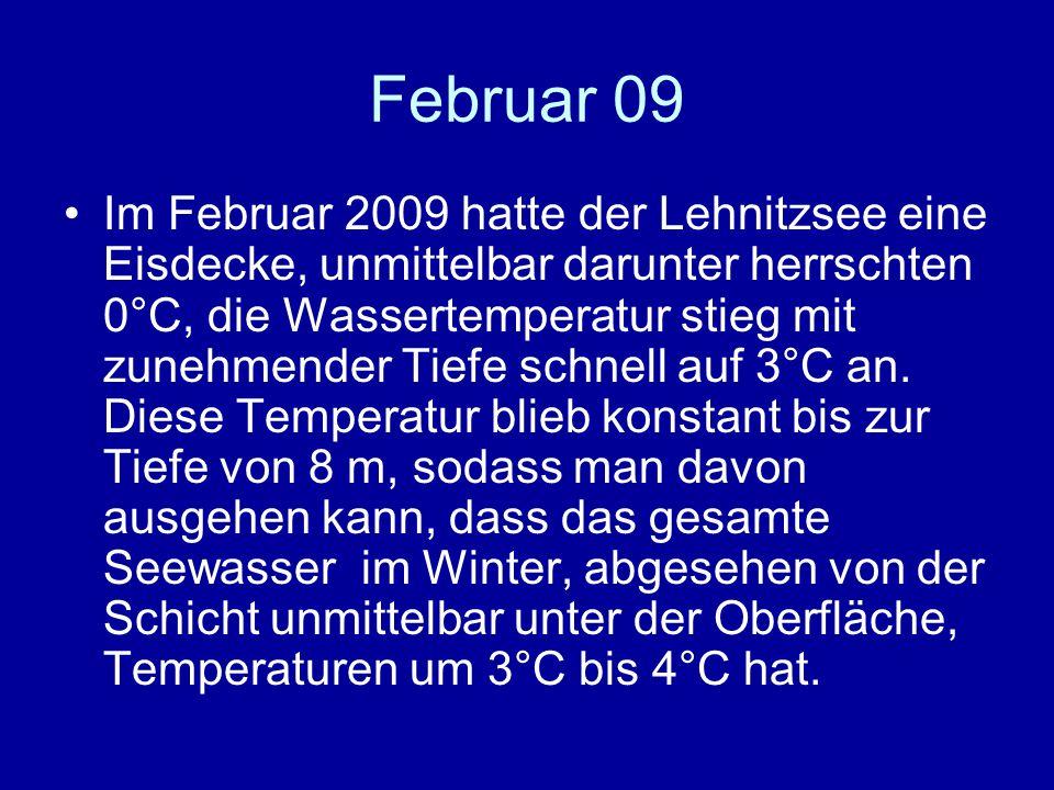 Februar 09 Im Februar 2009 hatte der Lehnitzsee eine Eisdecke, unmittelbar darunter herrschten 0°C, die Wassertemperatur stieg mit zunehmender Tiefe schnell auf 3°C an.