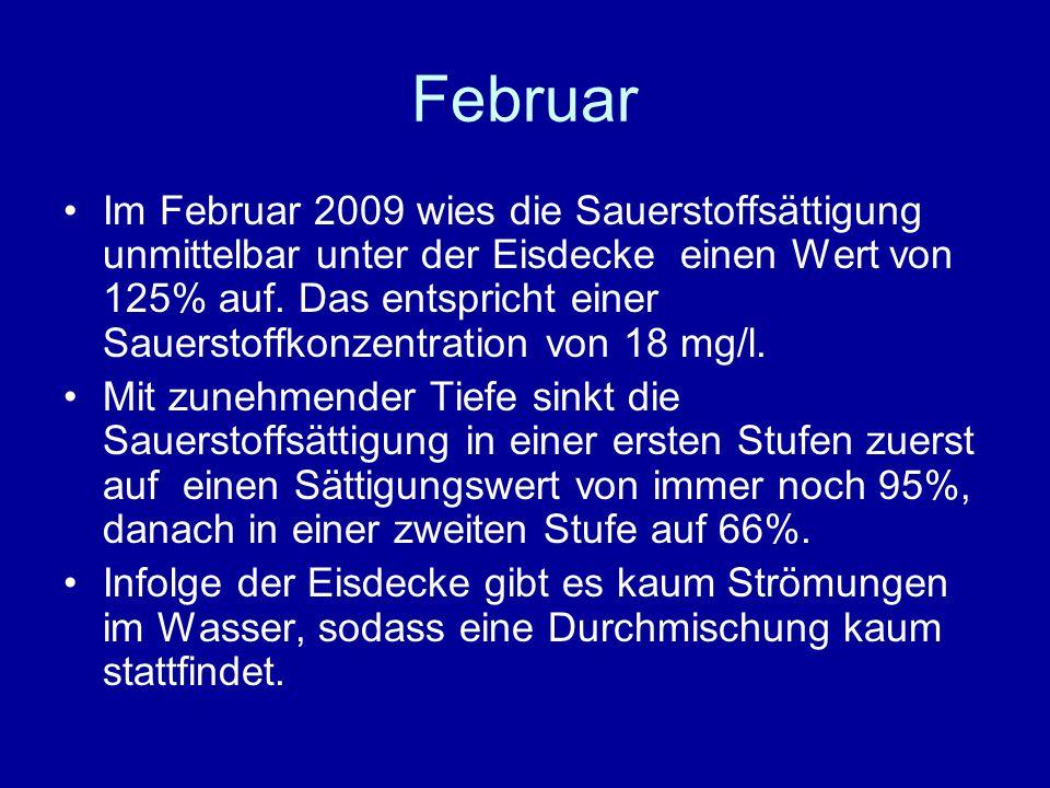Februar Im Februar 2009 wies die Sauerstoffsättigung unmittelbar unter der Eisdecke einen Wert von 125% auf.
