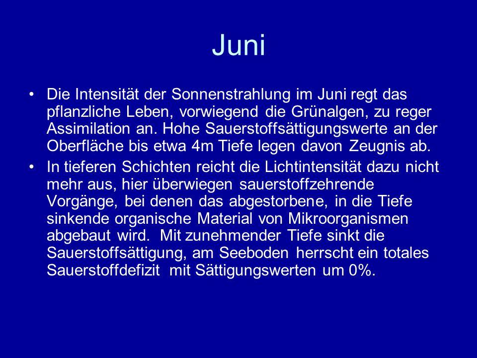 Juni Die Intensität der Sonnenstrahlung im Juni regt das pflanzliche Leben, vorwiegend die Grünalgen, zu reger Assimilation an.