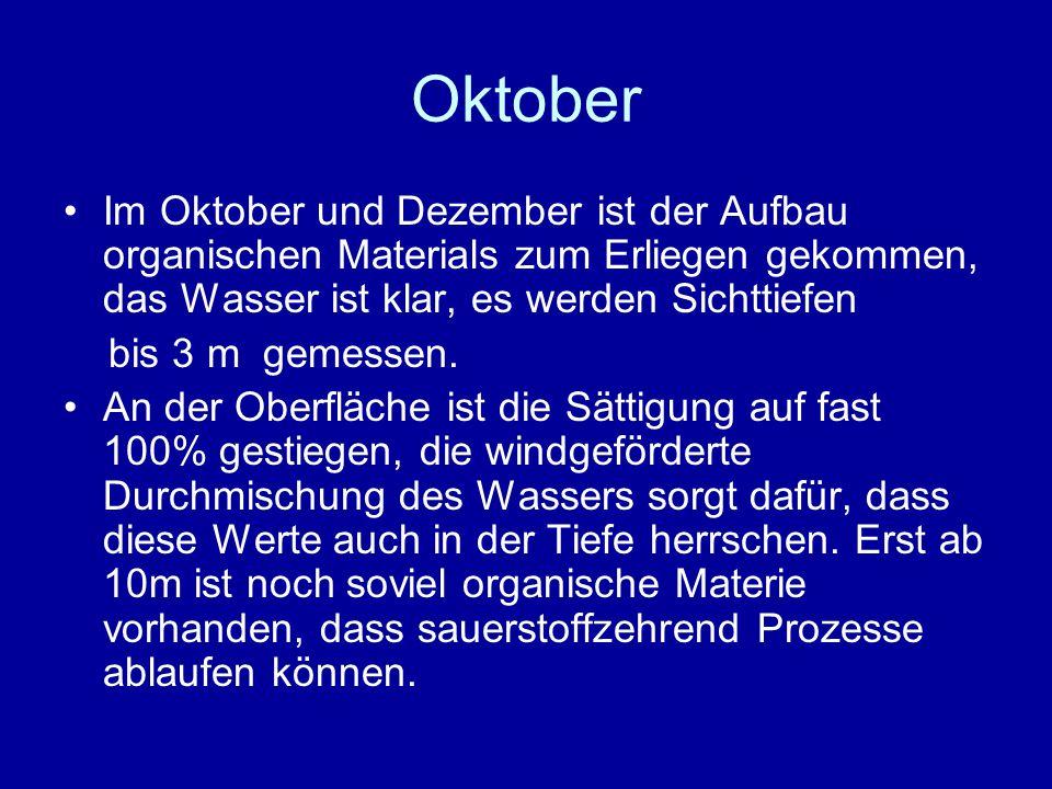 Oktober Im Oktober und Dezember ist der Aufbau organischen Materials zum Erliegen gekommen, das Wasser ist klar, es werden Sichttiefen bis 3 m gemessen.