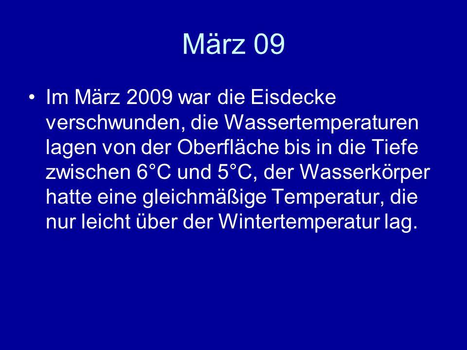 März 09 Im März 2009 war die Eisdecke verschwunden, die Wassertemperaturen lagen von der Oberfläche bis in die Tiefe zwischen 6°C und 5°C, der Wasserkörper hatte eine gleichmäßige Temperatur, die nur leicht über der Wintertemperatur lag.