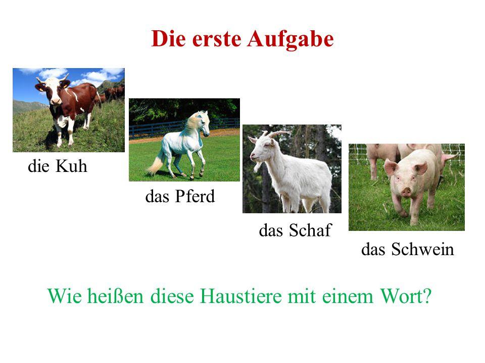 Das Vieh In engerer und gewöhnlicherer Bedeutung werden die zahmen Tiere, welche der Mensch zu seinem Gebrauche um sich hält, Vieh genannt.