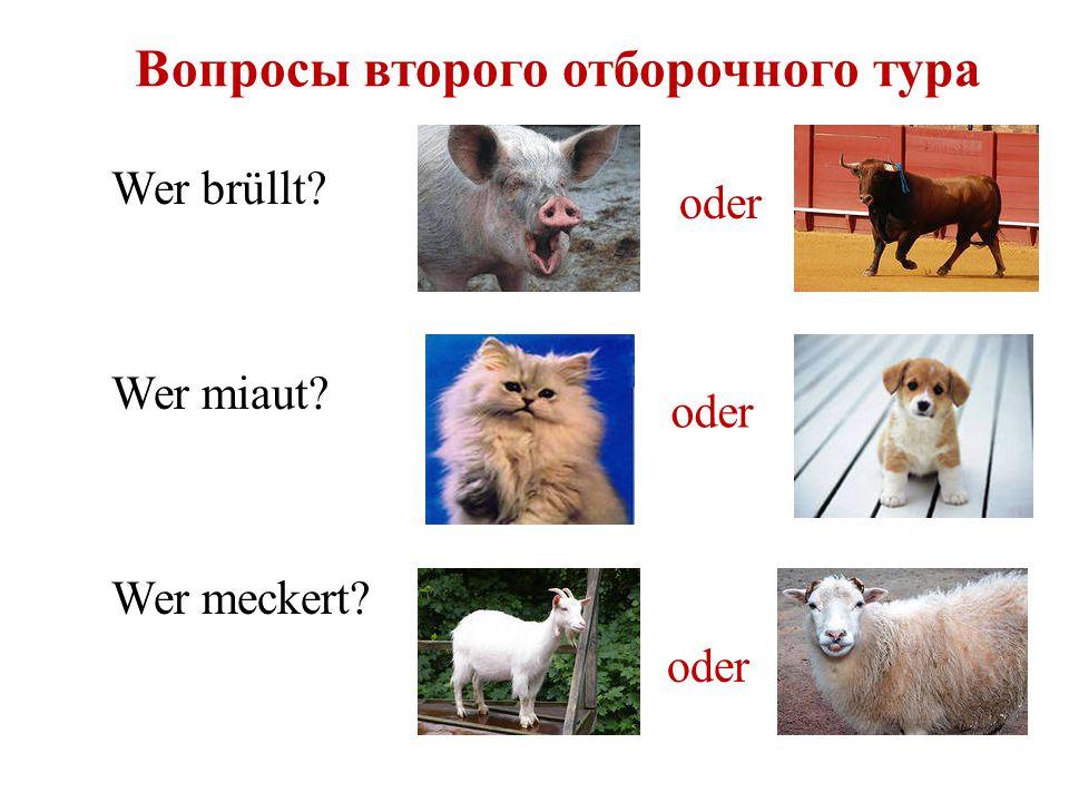 Die zweite Aufgabe die Kuh die Ziege das Schaf Was für ein Produkt ist für diese Tiere gemeinsam.