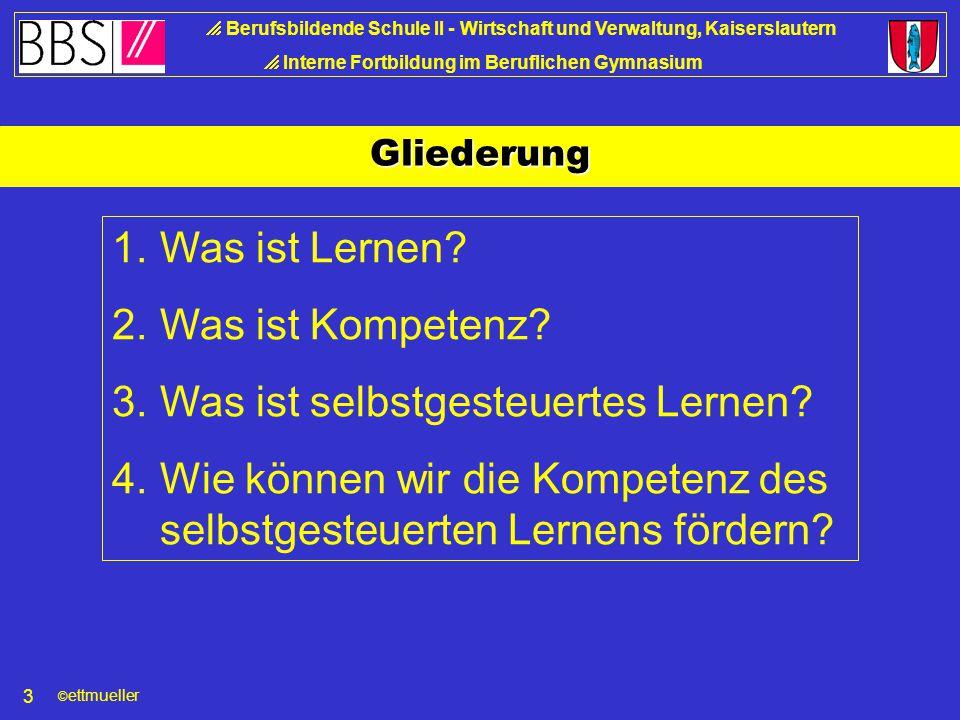 © ettmueller  Berufsbildende Schule II - Wirtschaft und Verwaltung, Kaiserslautern  Interne Fortbildung im Beruflichen Gymnasium 3 Gliederung 1.Was ist Lernen.
