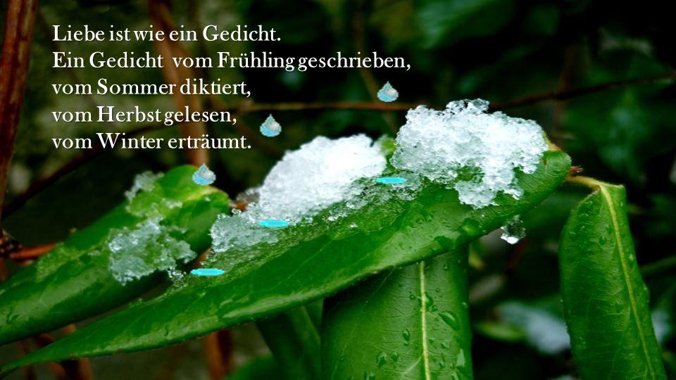 Liebe ist wie ein Gedicht. Ein Gedicht vom Frühling geschrieben, vom Sommer diktiert, vom Herbst gelesen, vom Winter erträumt.