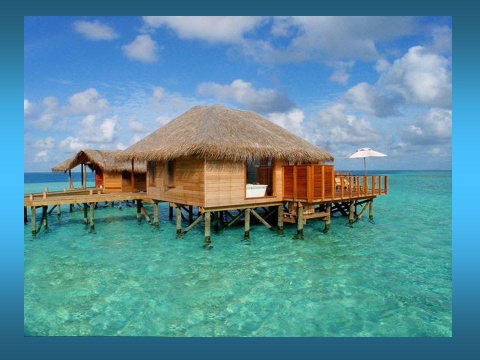 Für Transfer zur Insel ist gesorgt Eine angemietete Yacht steht zu deiner Verfügung.