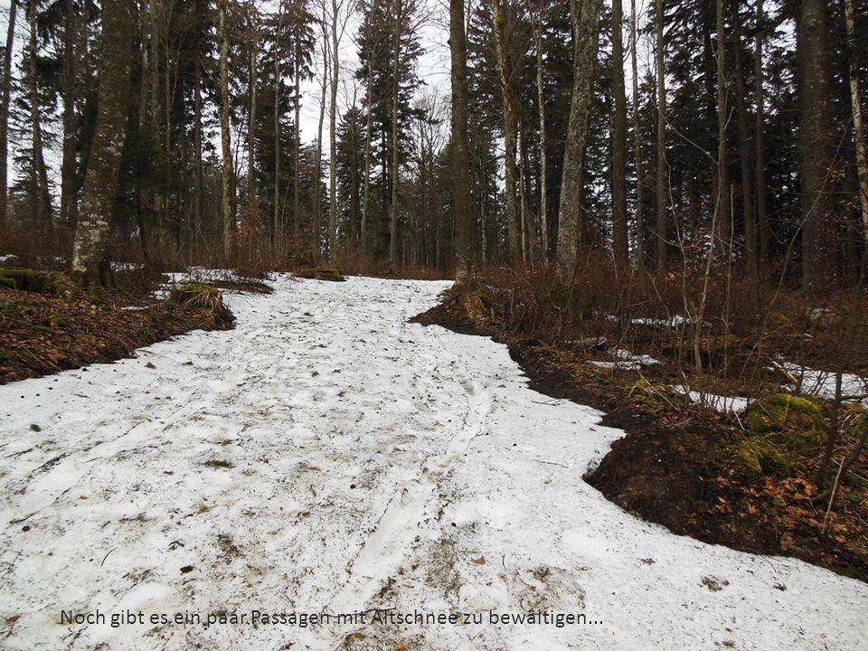 Noch gibt es ein paar Passagen mit Altschnee zu bewältigen...