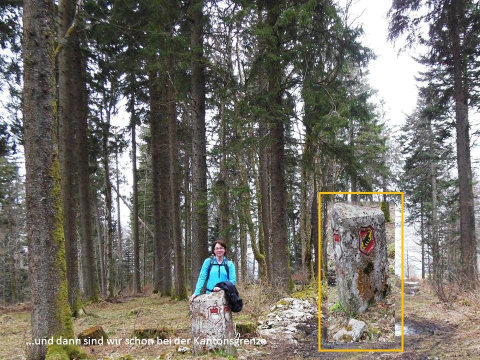 Wieder ist eine Etappe auf dem Jura-Höhenweg gemeistert.