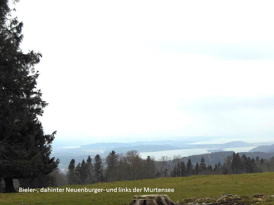Bieler-, dahinter Neuenburger- und links der Murtensee