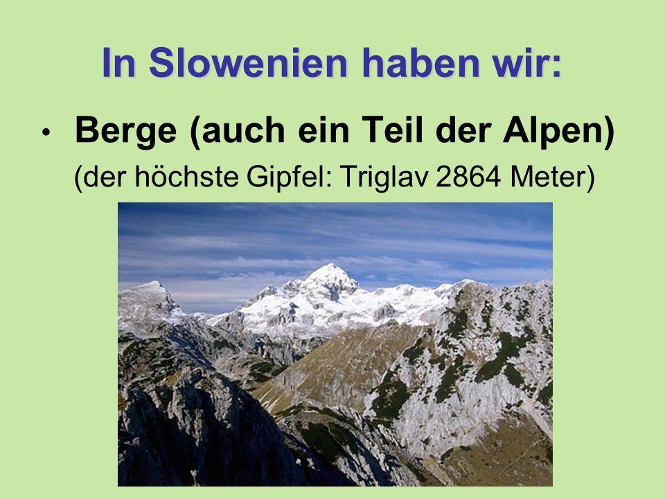 In Slowenien haben wir: Berge (auch ein Teil der Alpen) (der höchste Gipfel: Triglav 2864 Meter)