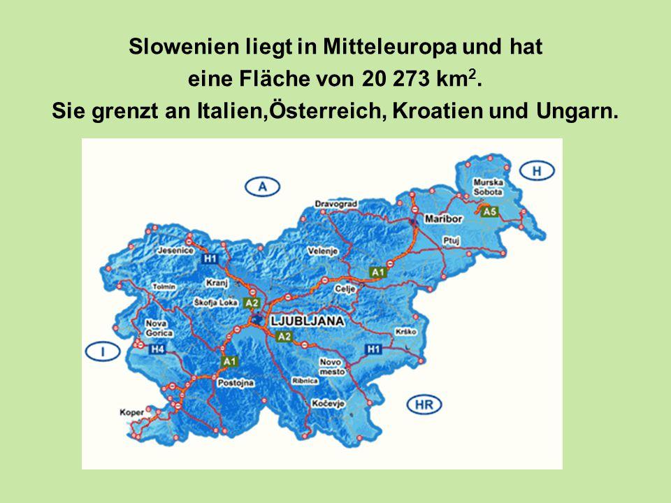 Slowenien liegt in Mitteleuropa und hat eine Fläche von 20 273 km 2.
