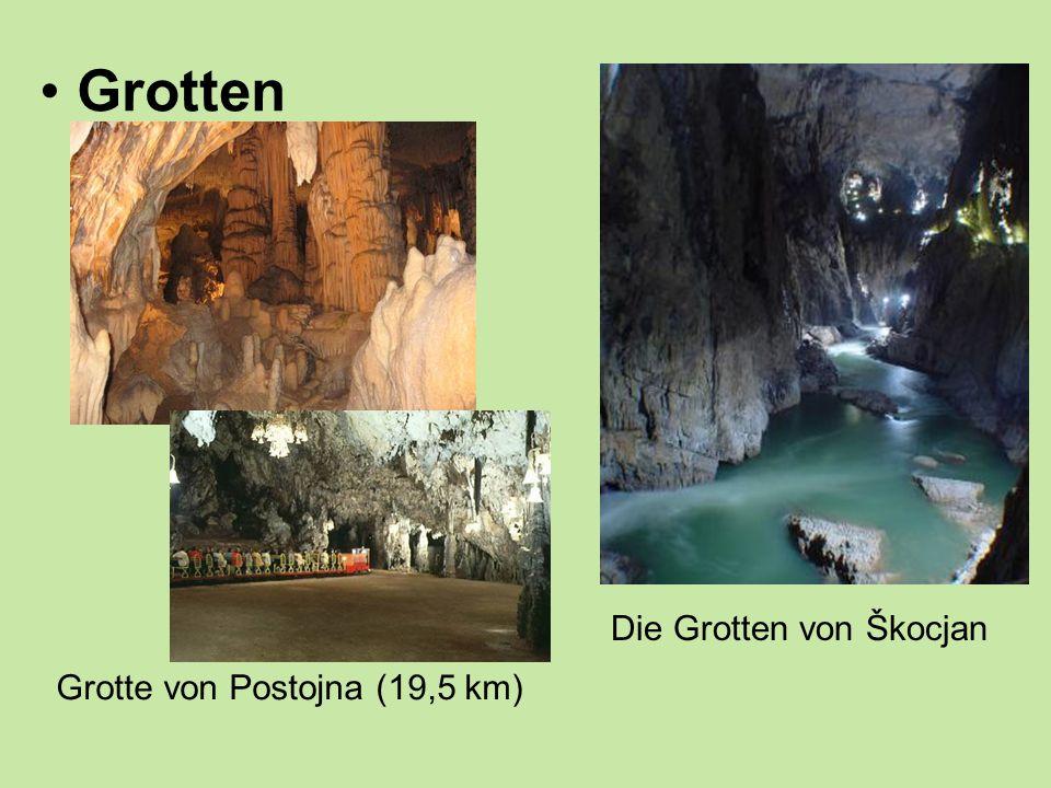 Grotten Grotte von Postojna (19,5 km) Die Grotten von Škocjan