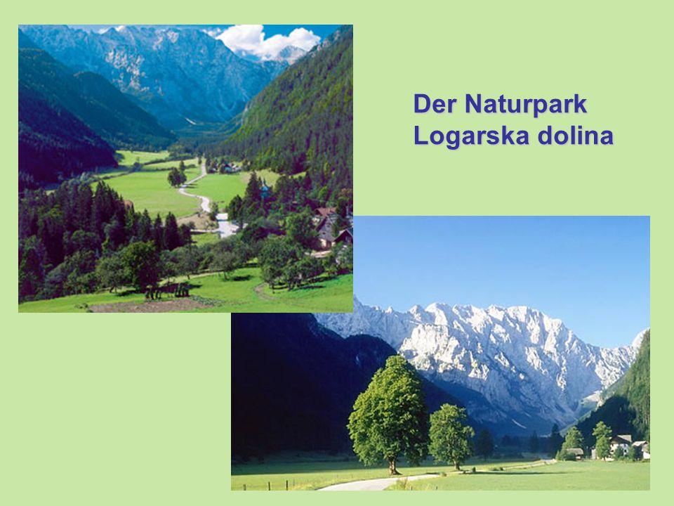 Der Naturpark Logarska dolina