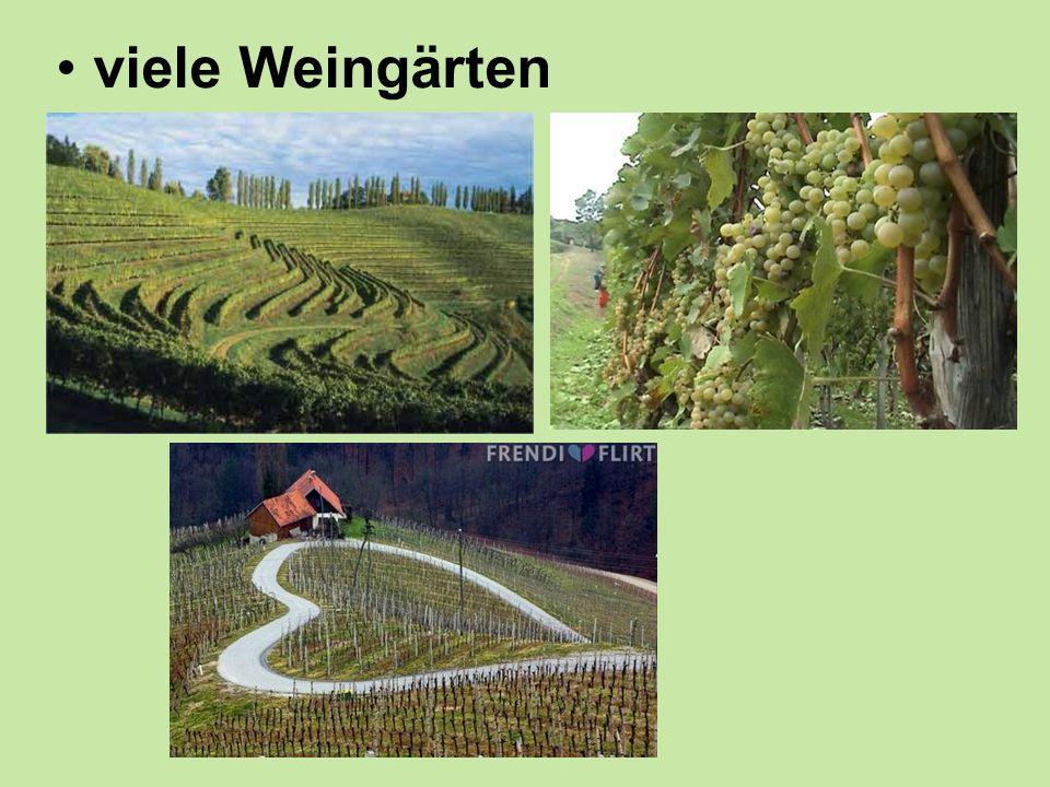 viele Weingärten