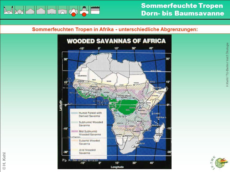 Sommerfeuchten Tropen in Afrika - unterschiedliche Abgrenzungen: H.Kehl / TU-Berlin / Inst.f.Ökologie Sommerfeuchte Tropen Dorn- bis Baumsavanne © H.