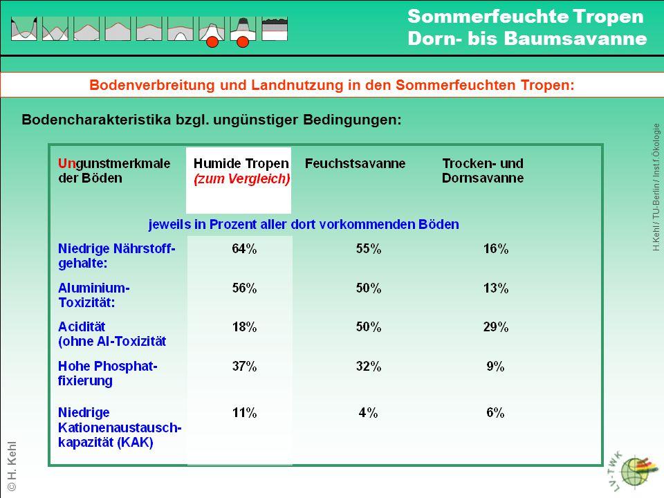 Bodenverbreitung und Landnutzung in den Sommerfeuchten Tropen: Bodencharakteristika bzgl. ungünstiger Bedingungen: H.Kehl / TU-Berlin / Inst.f.Ökologi