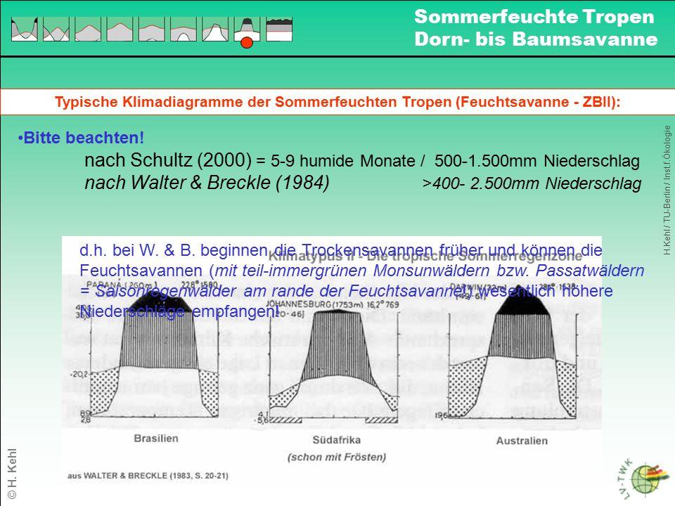 Typische Klimadiagramme der Sommerfeuchten Tropen (Feuchtsavanne - ZBII): Bitte beachten! nach Schultz (2000) = 5-9 humide Monate / 500-1.500mm Nieder