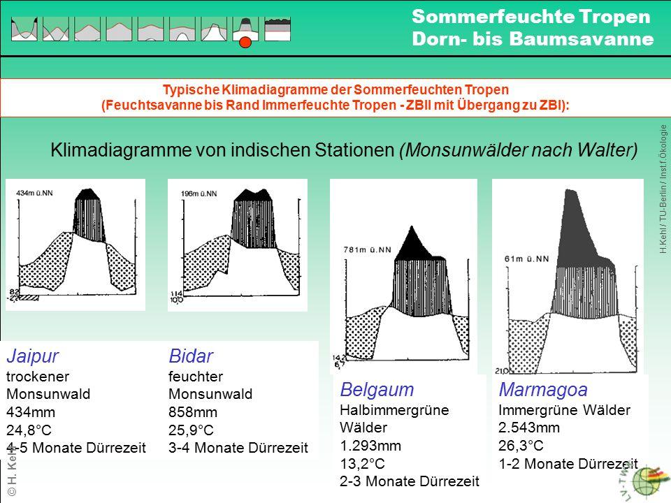 Typische Klimadiagramme der Sommerfeuchten Tropen (Feuchtsavanne bis Rand Immerfeuchte Tropen - ZBII mit Übergang zu ZBI): Klimadiagramme von indische