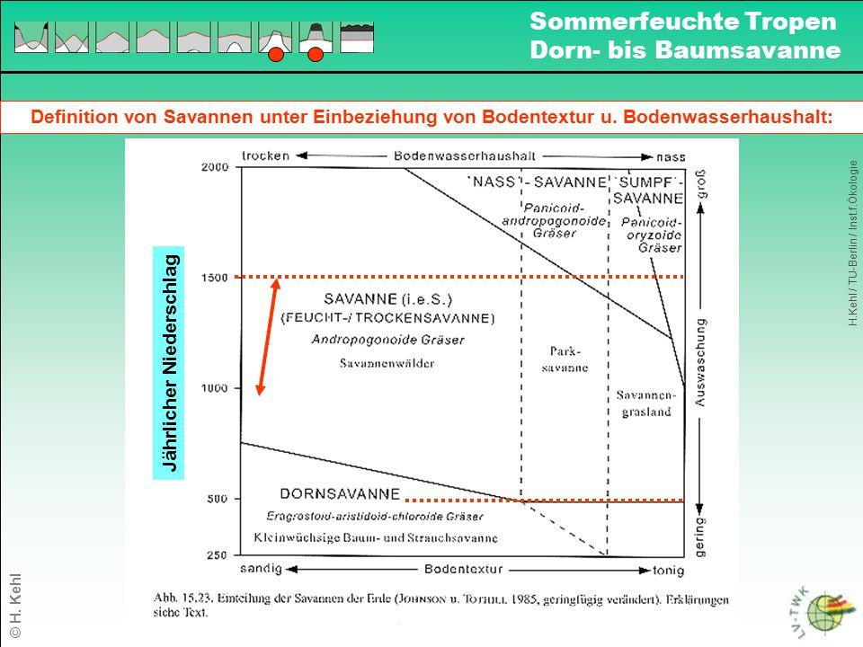 Definition von Savannen unter Einbeziehung von Bodentextur u. Bodenwasserhaushalt: Jährlicher Niederschlag H.Kehl / TU-Berlin / Inst.f.Ökologie Sommer