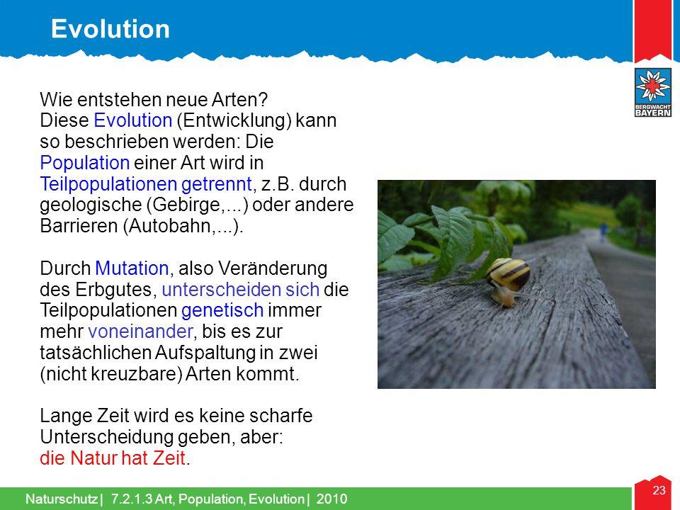 Naturschutz | 23 Wie entstehen neue Arten? Diese Evolution (Entwicklung) kann so beschrieben werden: Die Population einer Art wird in Teilpopulationen