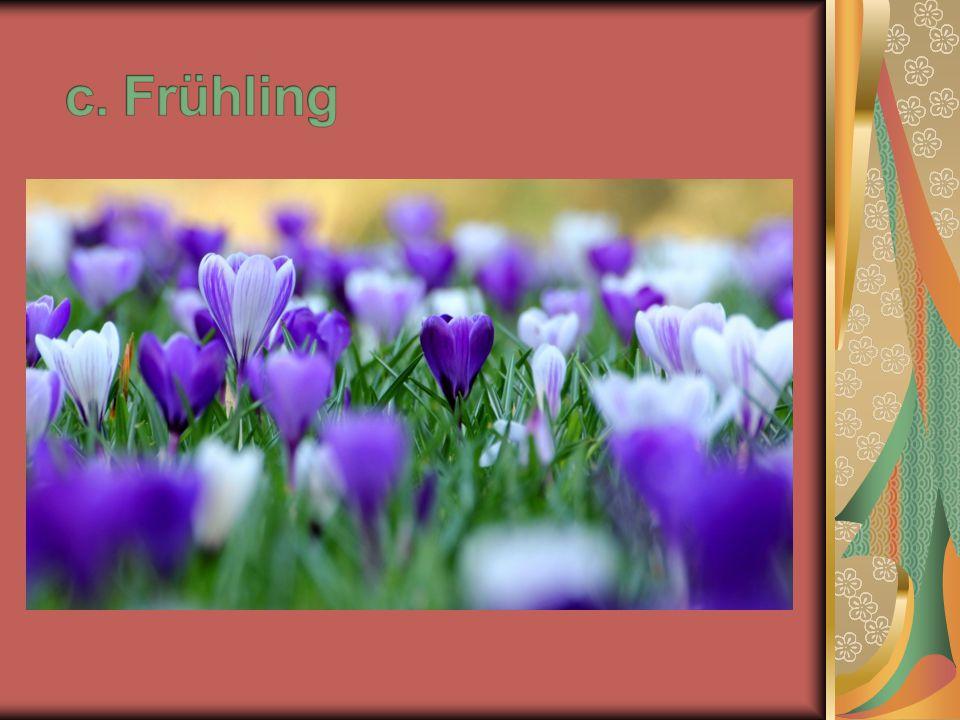 14. Wie heißt die Blume, die man auch als Osterglocke bezeichnet? a. Tulpe b. Maiglocke c. Narzisse