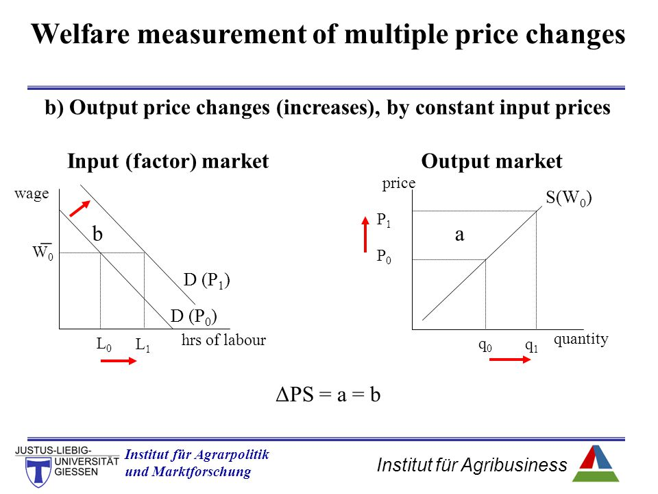 Institut für Agribusiness Institut für Agrarpolitik und Marktforschung Hannover 14.11.07.ppt Welfare measurement of multiple price changes b) Output p
