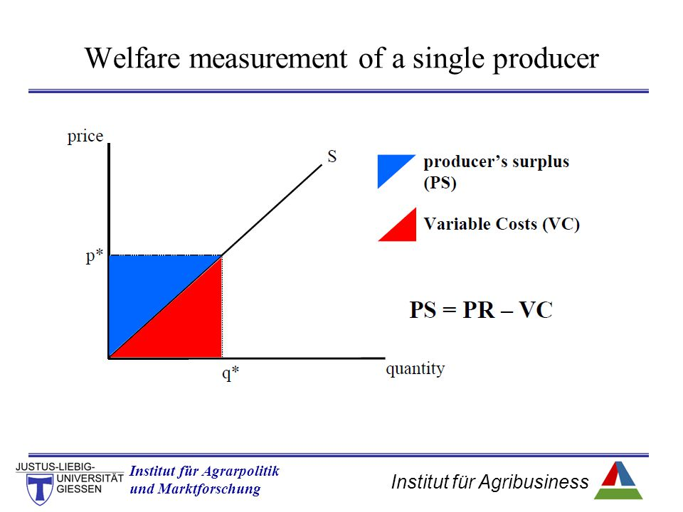 Institut für Agribusiness Institut für Agrarpolitik und Marktforschung Hannover 14.11.07.ppt Welfare measurement of a single producer