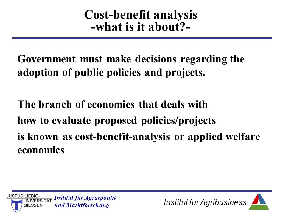 Institut für Agribusiness Institut für Agrarpolitik und Marktforschung Hannover 14.11.07.ppt If the country does not have a comparative advantage, then the domestic price will be higher than the world price, and the country will be an importer of the good.
