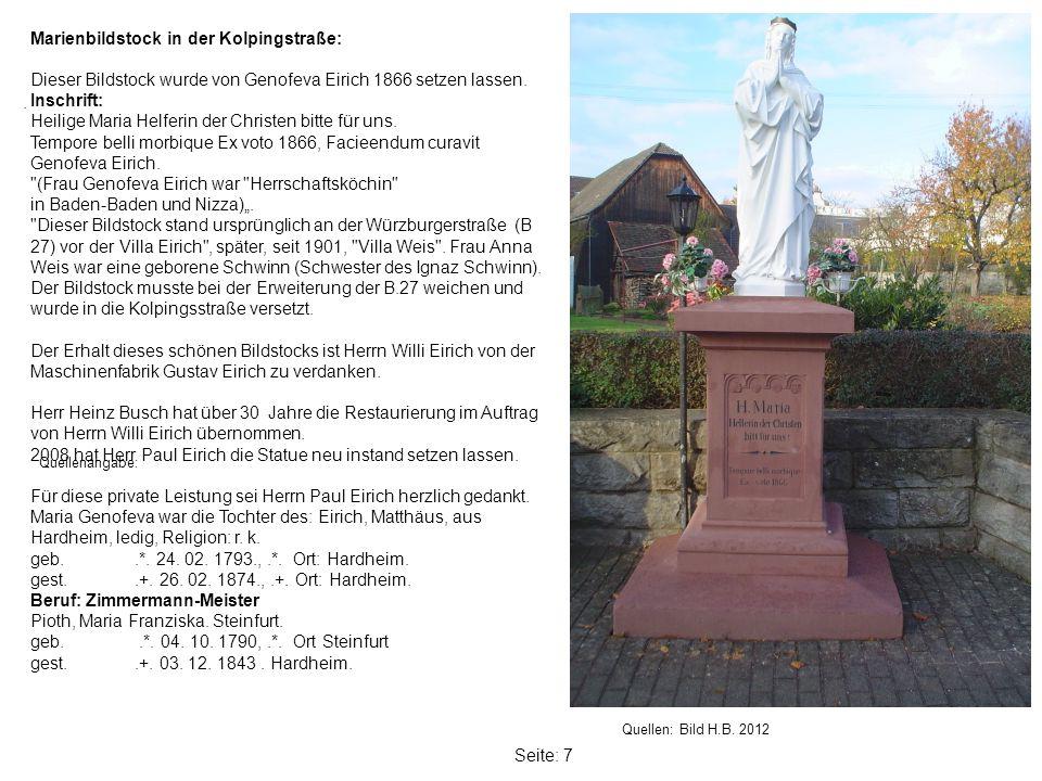 Seite: 7 Marienbildstock in der Kolpingstraße: Dieser Bildstock wurde von Genofeva Eirich 1866 setzen lassen.