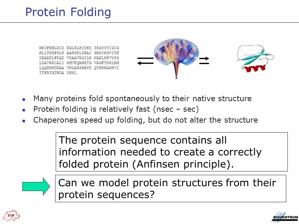 Evaluation of Automated protein structure prediction [ Data source: EVA-CM http://cubic.bioc.columbia.edu/eva/ ] The lower RMSD of SWISS-MODEL is related to a lower coverage in sequence space.