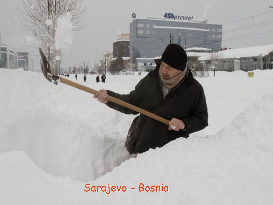 Sarajevo - Bosnia