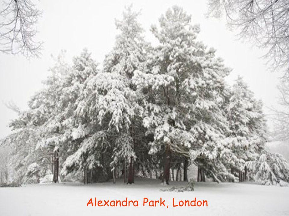 Alexandra Park, London