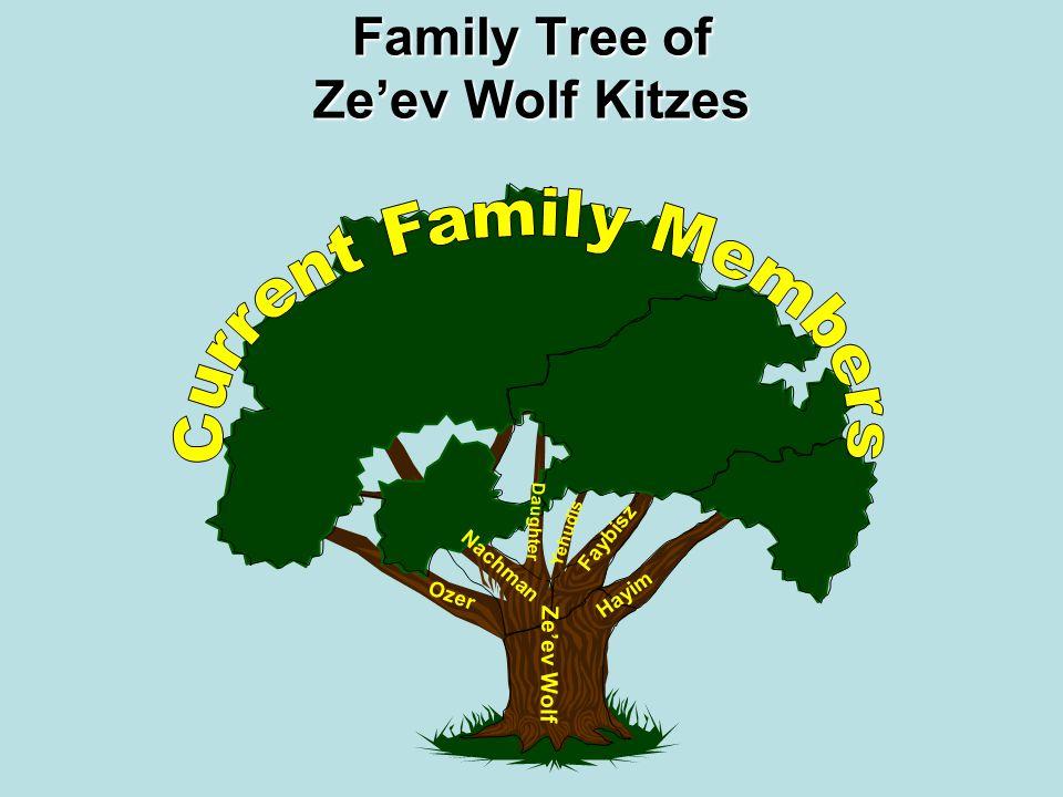 Family Tree of Ze'ev Wolf Kitzes Ze'ev Wolf Nachman Faybisz Hayim Ozer Yehudis Daughter Missing Family Names