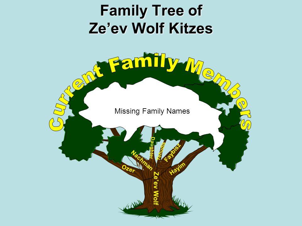 1725 1875 1850 1825 1800 1775 1750 1700 1900 Ze'ev Wolf Kitzes Family Tree of Zeev Wolf Kitzes The tree starts with Rabbi Ze'ev Wolf Kitzes ~1695-1789 He Lived in Medzibozh, Ukraine.