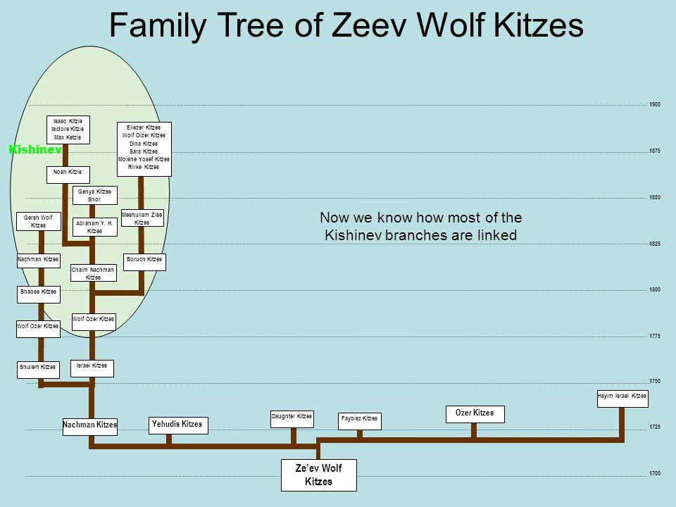 1725 1750 1700 Daughter Kitzes Faybisz Kitzes Hayim Israel Kitzes Family Tree of Zeev Wolf Kitzes 1875 1850 1825 1800 1775 1900 Yehudis Kitzes Ozer Ki