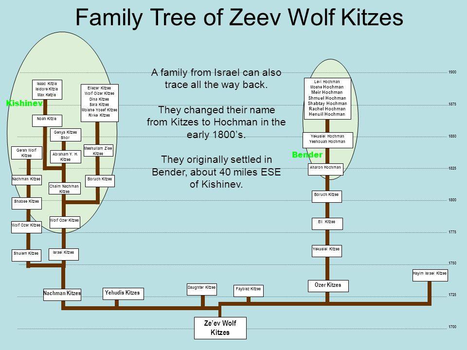 1725 1750 1700 Daughter Kitzes Faybisz Kitzes Hayim Israel Kitzes Family Tree of Zeev Wolf Kitzes 1875 1850 1825 1800 1775 1900 Yehudis Kitzes Yekusie