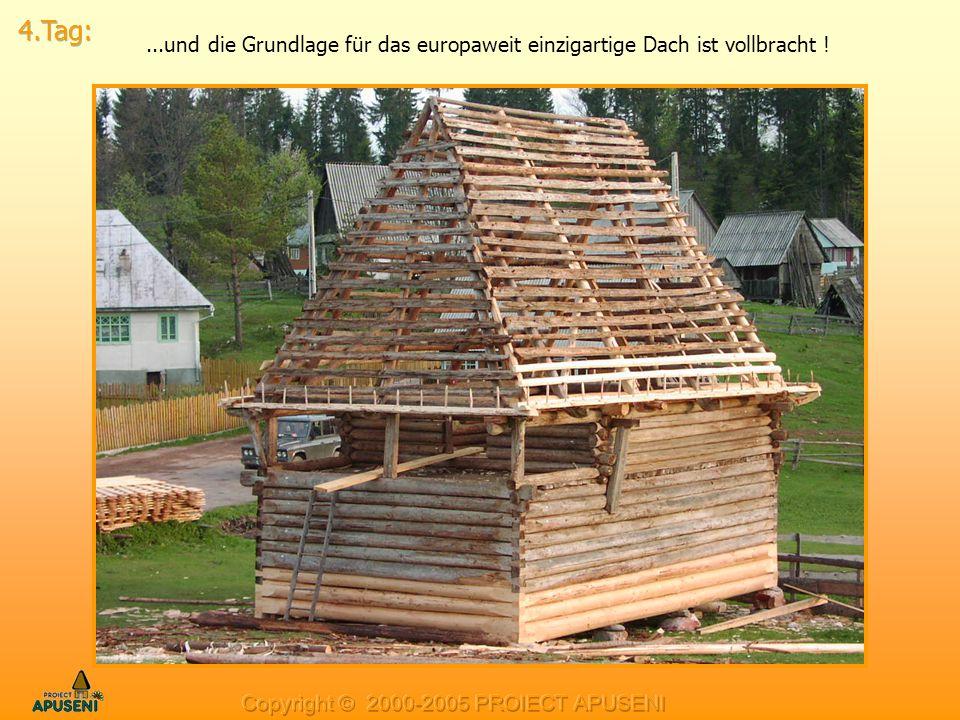 ...und die Grundlage für das europaweit einzigartige Dach ist vollbracht !