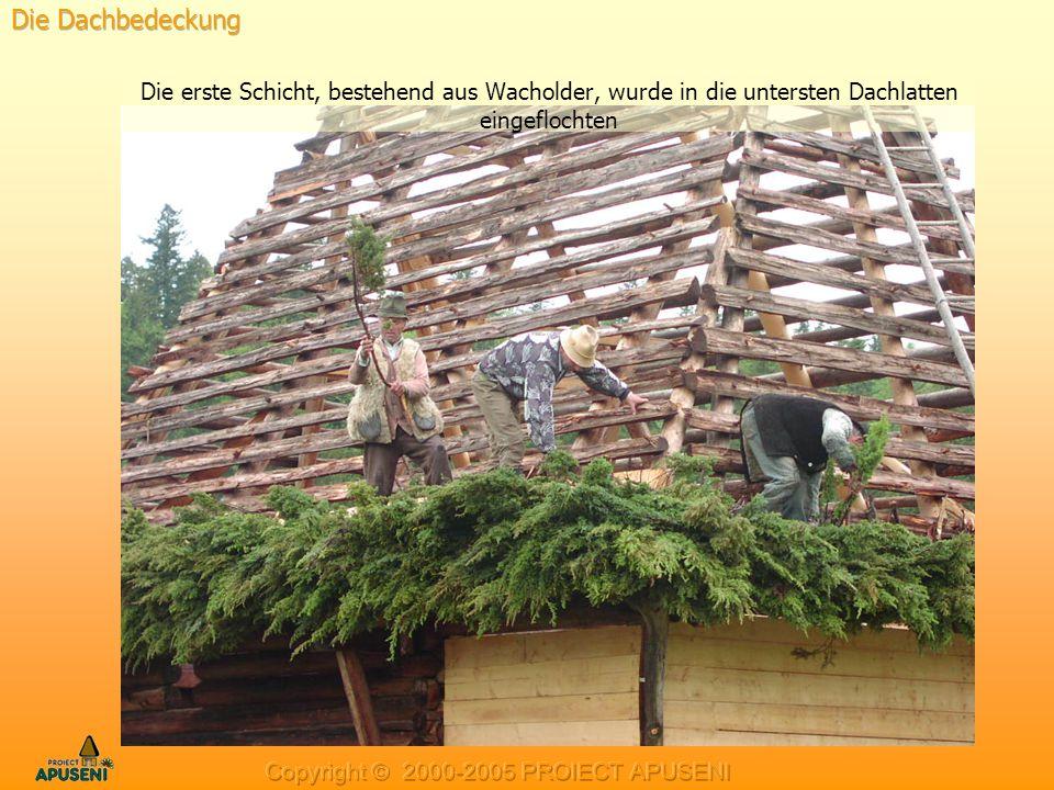 Die erste Schicht, bestehend aus Wacholder, wurde in die untersten Dachlatten eingeflochten