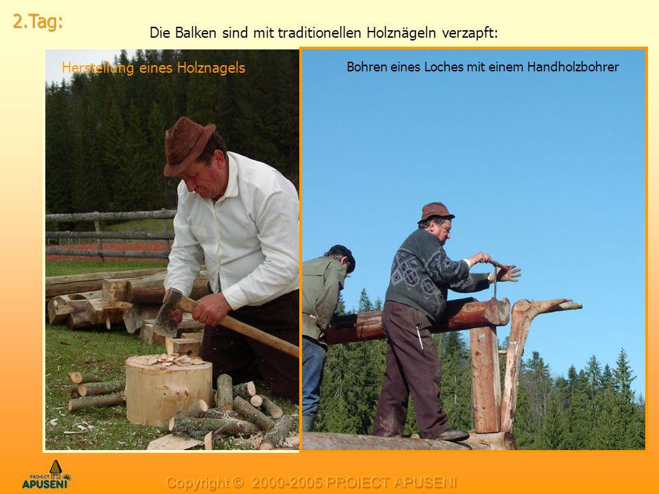 Die Balken sind mit traditionellen Holznägeln verzapft: Herstellung eines Holznagels Bohren eines Loches mit einem Handholzbohrer