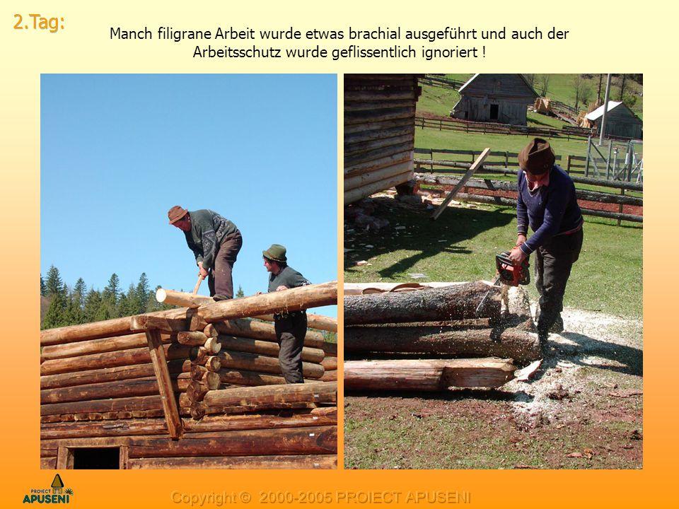 Manch filigrane Arbeit wurde etwas brachial ausgeführt und auch der Arbeitsschutz wurde geflissentlich ignoriert !
