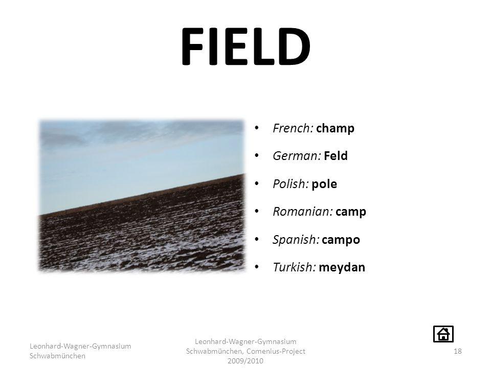 FIELD French: champ German: Feld Polish: pole Romanian: camp Spanish: campo Turkish: meydan Leonhard-Wagner-Gymnasium Schwabmünchen Leonhard-Wagner-Gymnasium Schwabmünchen, Comenius-Project 2009/2010 18