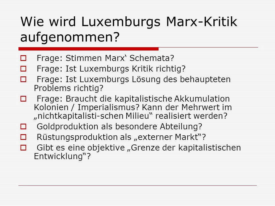 Wie wird Luxemburgs Marx-Kritik aufgenommen?  Frage: Stimmen Marx' Schemata?  Frage: Ist Luxemburgs Kritik richtig?  Frage: Ist Luxemburgs Lösung d